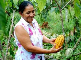 Aprobación de un programa por la Agencia Vasca en Ecuador